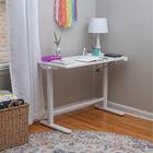 Adjustable Youth Electronic Desk