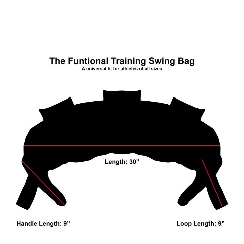 Functional Training Swing Bag | 15 LB